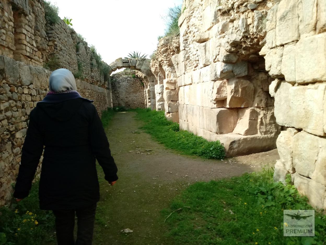 Przewodniczka postarożytnych ruinach rzymskiego miasta